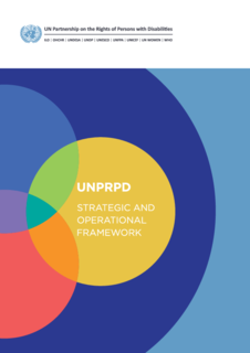 Strategic Operational Framework 2016