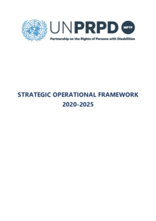 Strategic Operational Framework 2020-2025